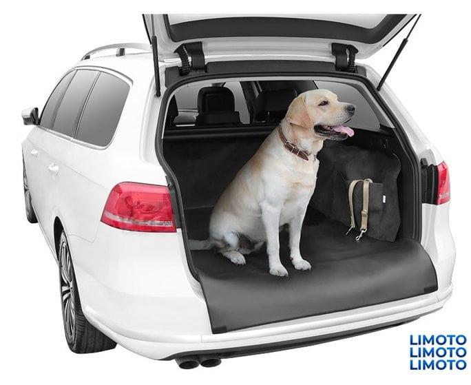 Чехол для перевозки собак Kegel-blazusiak Dexter (экокожа) размер XXL