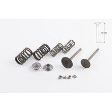 Купить Клапаны (пара, в сборе)   Delta 125   (L-65mm)   HEADER-260 в Интернет-Магазине LIMOTO