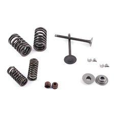 Купить Клапаны (пара, в сборе)   4T GY6 80   (L-69mm) в Интернет-Магазине LIMOTO