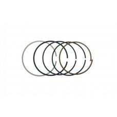 Купить Кольца   Delta 100   .STD   (Ø50,00)   GONGYU в Интернет-Магазине LIMOTO