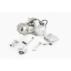 Купить Двигатель   Delta 125cc   (МКПП 157FMH, алюминиевый цилиндр)   (Слоник)   TZH в Интернет-Магазине LIMOTO