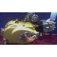 Купить Двигатель   Delta, Alpha 50cc   (МКПП 139FMA-A)   TZH в Интернет-Магазине LIMOTO