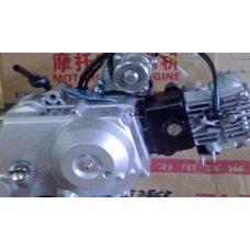 Купить Двигатель   Delta, Alpha 100cc   (AКПП 150FMG, водяное охлаждение)   TZH в Интернет-Магазине LIMOTO